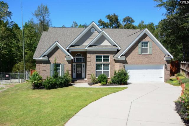 426 Pisgah Flats Court, Lexington, SC 29072 (MLS #456657) :: EXIT Real Estate Consultants