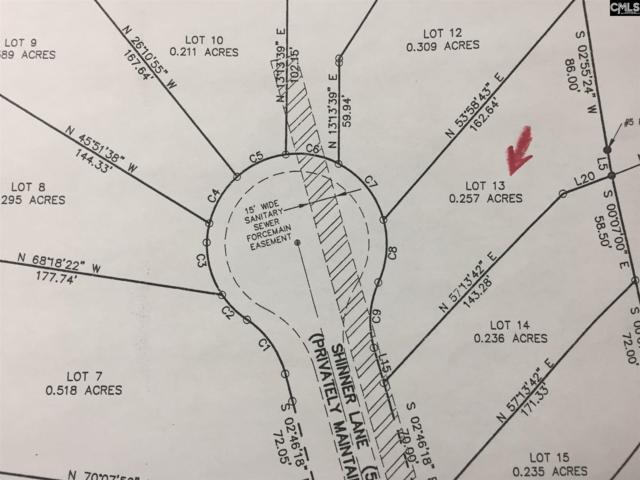 156 Shinner Lane, Batesburg, SC 29006 (MLS #456720) :: RE/MAX AT THE LAKE