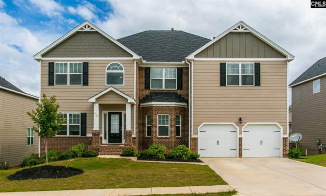 332 Shell Brooke Way, Lexington, SC 29073 (MLS #456725) :: Home Advantage Realty, LLC