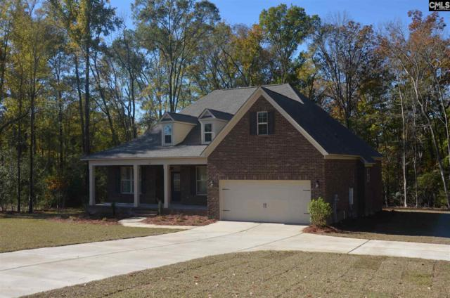 211 Limestone Road, Chapin, SC 29036 (MLS #456743) :: RE/MAX AT THE LAKE