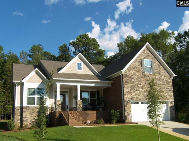 226 Regatta Forest Drive, Columbia, SC 29212 (MLS #456832) :: The Olivia Cooley Group at Keller Williams Realty