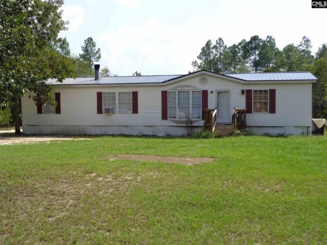 121 Testo Drive, Lexington, SC 29073 (MLS #456840) :: The Olivia Cooley Group at Keller Williams Realty