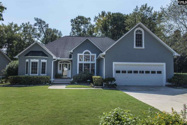 133 Sandstone Road, Columbia, SC 29212 (MLS #456869) :: The Olivia Cooley Group at Keller Williams Realty
