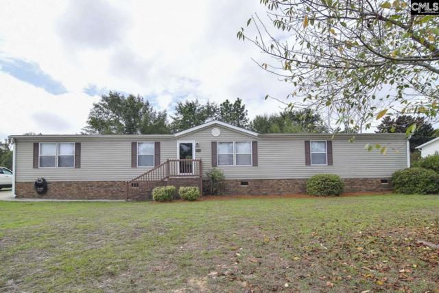 132 Heather Ridge Drive, Gaston, SC 29053 (MLS #456941) :: Home Advantage Realty, LLC