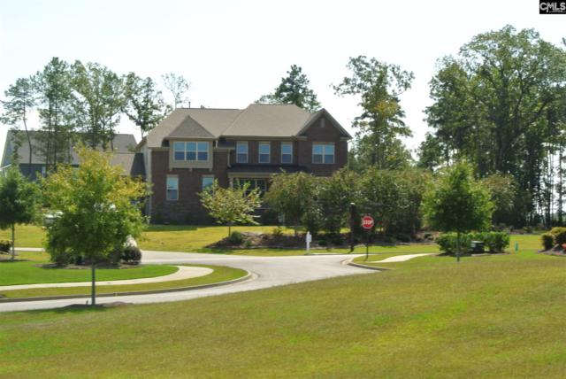 1012 Portrait Hill Dr, Chapin, SC 29036 (MLS #457054) :: EXIT Real Estate Consultants