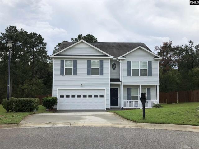 820 Goldeneye Court, Blythewood, SC 29016 (MLS #457256) :: Home Advantage Realty, LLC