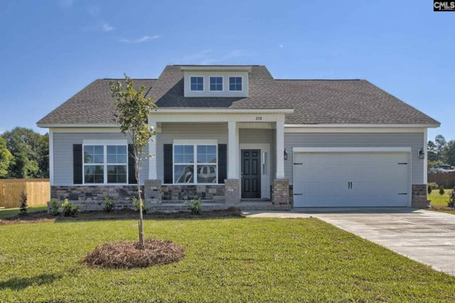 321 Saucer Way, Chapin, SC 29036 (MLS #457292) :: EXIT Real Estate Consultants