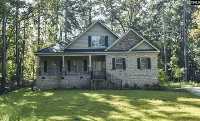 407 Lookover Pointe Drive, Chapin, SC 29036 (MLS #457394) :: Home Advantage Realty, LLC