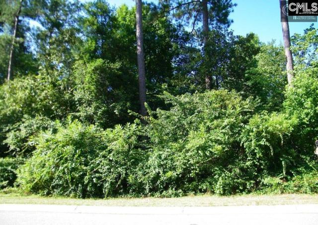 206 Deer Crossing Road, Elgin, SC 29045 (MLS #457482) :: Home Advantage Realty, LLC