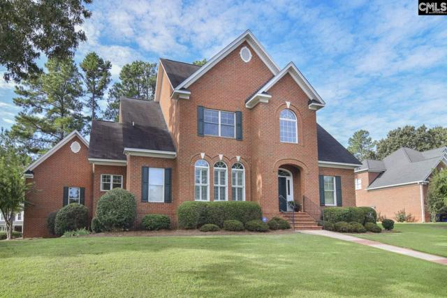 346 Oxenbridge Way, Chapin, SC 29036 (MLS #457528) :: EXIT Real Estate Consultants
