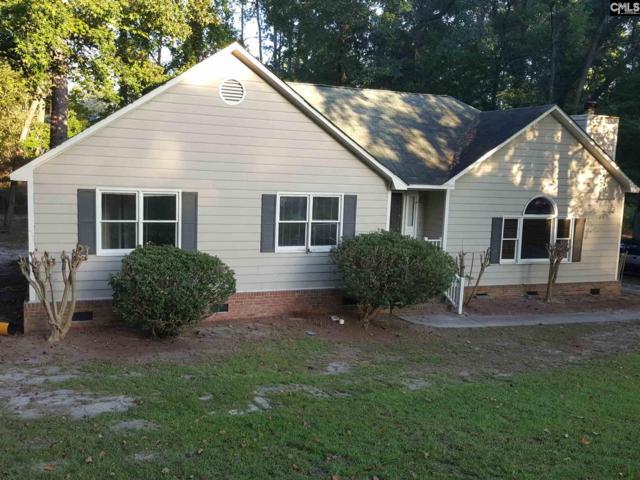 9740 Windsor Lake, Columbia, SC 29223 (MLS #457541) :: EXIT Real Estate Consultants