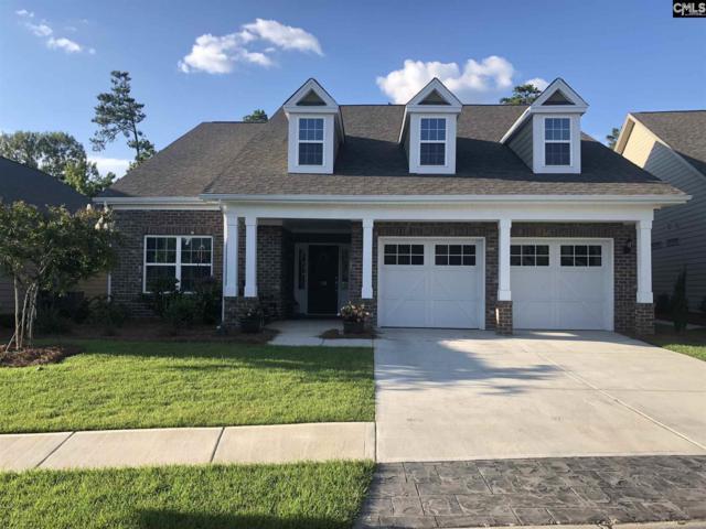 745 Xander Way, Chapin, SC 29036 (MLS #457563) :: Home Advantage Realty, LLC