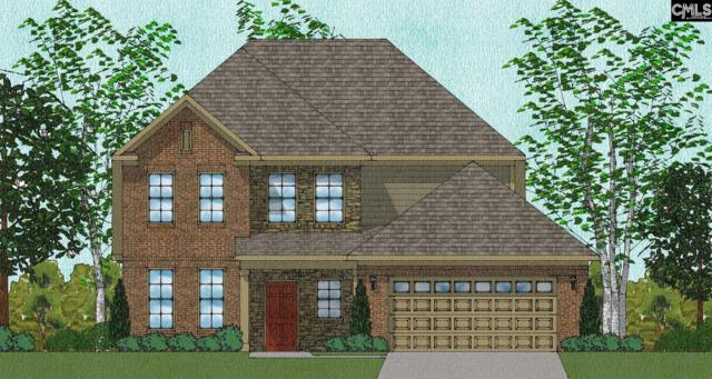 110 Adastra Lane #468, Lexington, SC 29072 (MLS #457693) :: The Olivia Cooley Group at Keller Williams Realty