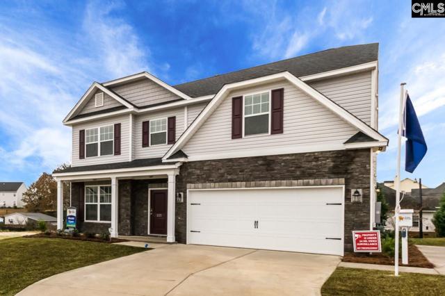 1132 Grey Pine Drive, Blythewood, SC 29016 (MLS #457872) :: Home Advantage Realty, LLC