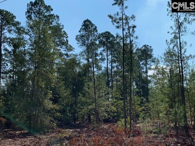0 Martin Smith Road, Gilbert, SC 29054 (MLS #457983) :: EXIT Real Estate Consultants