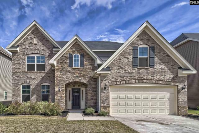 243 Longmont Drive, Lexington, SC 29072 (MLS #458104) :: The Olivia Cooley Group at Keller Williams Realty