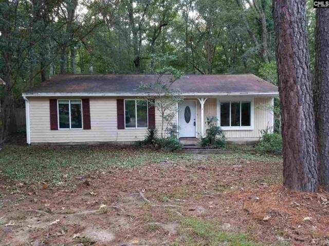 201 Beechwood, Irmo, SC 29063 (MLS #458111) :: EXIT Real Estate Consultants