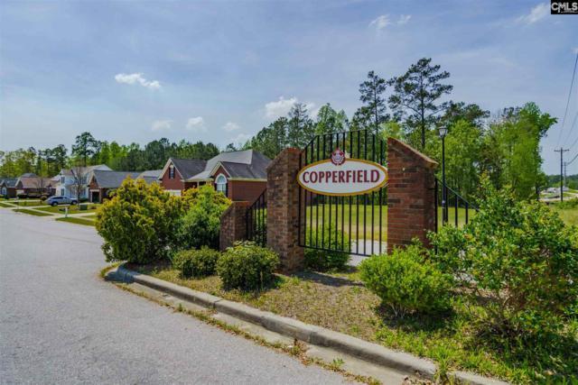 110 Copperhill Lane #134, Columbia, SC 29229 (MLS #458246) :: Home Advantage Realty, LLC