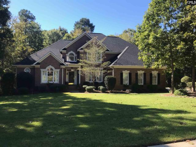 224 Treyburn Circle, Irmo, SC 29063 (MLS #458272) :: Home Advantage Realty, LLC