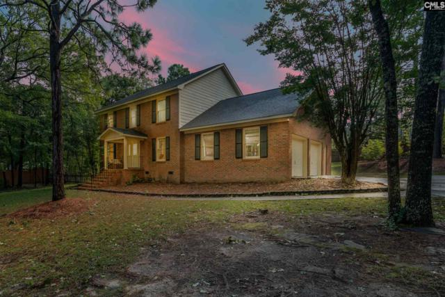 232 Ridgepoint Drive, Columbia, SC 29223 (MLS #458285) :: Home Advantage Realty, LLC