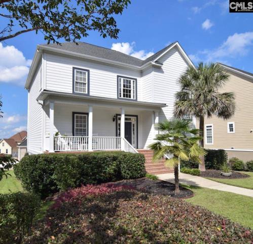 207 Harbor Vista, Lexington, SC 29072 (MLS #458320) :: EXIT Real Estate Consultants