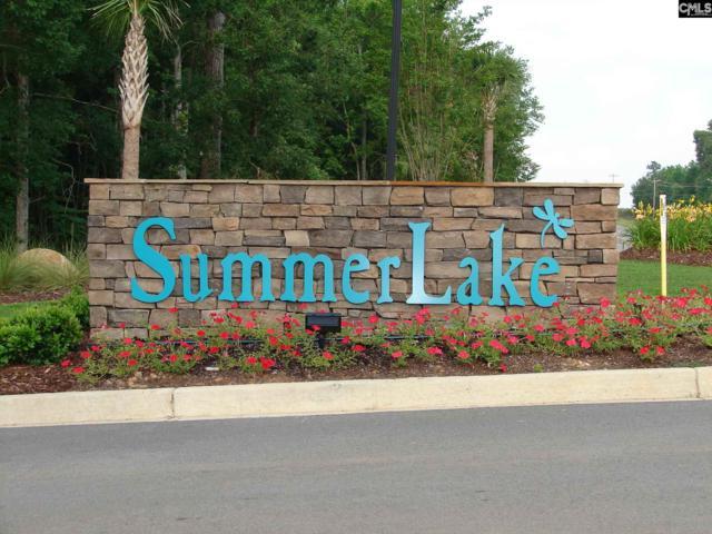200 Clubside Drive, Lexington, SC 29072 (MLS #458340) :: EXIT Real Estate Consultants