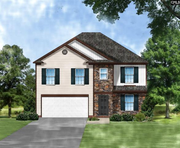 162 Colony Drive, Camden, SC 29020 (MLS #458373) :: The Olivia Cooley Group at Keller Williams Realty