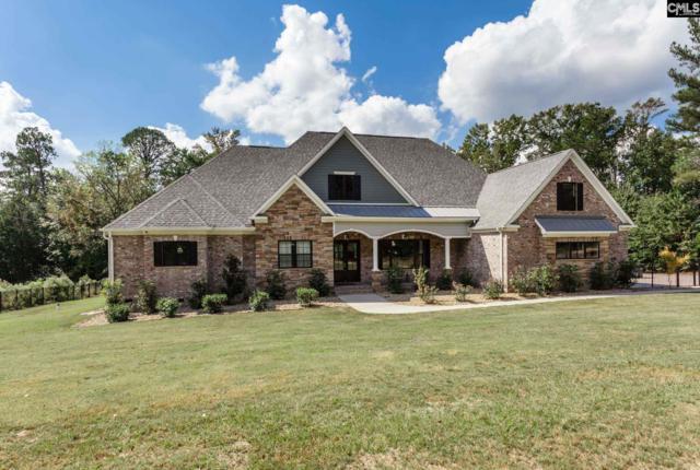 463 Old Chapin Rd, Lexington, SC 29072 (MLS #458408) :: Home Advantage Realty, LLC