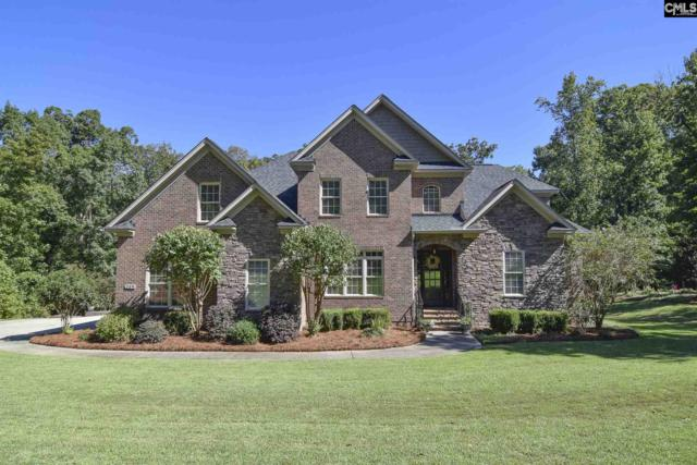 249 Oak Haven Drive, Lexington, SC 29072 (MLS #458414) :: The Olivia Cooley Group at Keller Williams Realty