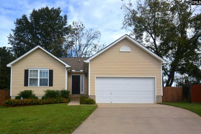 501 Turkey Pointe Lane, Chapin, SC 29036 (MLS #458415) :: EXIT Real Estate Consultants