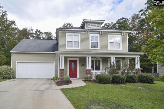 570 Foxstone Drive, Chapin, SC 29036 (MLS #458427) :: EXIT Real Estate Consultants