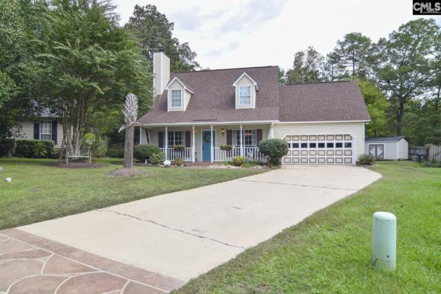168 Northshore Drive, Chapin, SC 29036 (MLS #458432) :: Home Advantage Realty, LLC