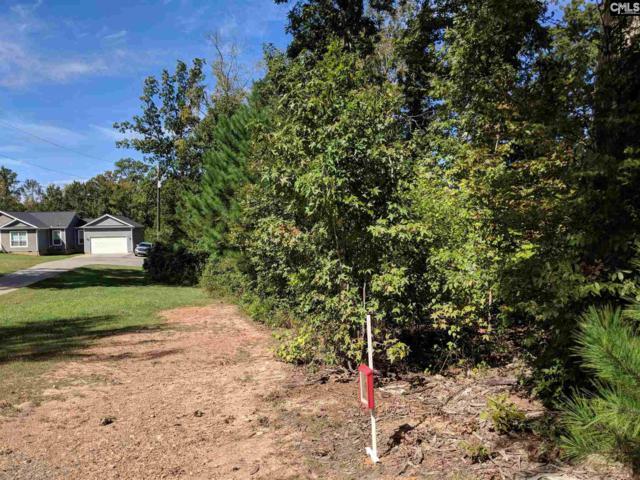 57 Nature Creek Trail C, Irmo, SC 29063 (MLS #458435) :: EXIT Real Estate Consultants