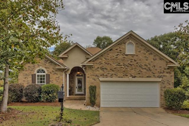 221 Lake Hilton Drive, Chapin, SC 29036 (MLS #458475) :: Home Advantage Realty, LLC