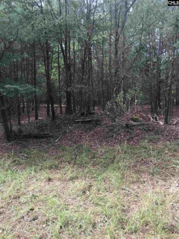Lot 5 & 6 Peninsula Drive, Prosperity, SC 29127 (MLS #458511) :: Home Advantage Realty, LLC