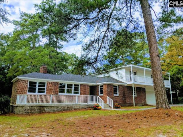 5243 Pinestraw Road, Columbia, SC 29206 (MLS #458519) :: Home Advantage Realty, LLC