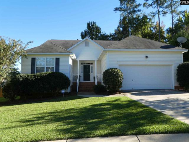 256 Oldtown Dr, Lexington, SC 29072 (MLS #458582) :: EXIT Real Estate Consultants