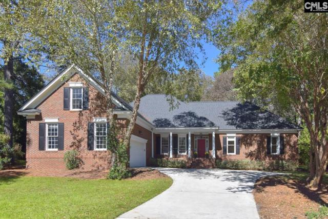 110 Spring Point Drive, Columbia, SC 29229 (MLS #458611) :: EXIT Real Estate Consultants