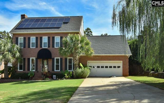 309 Brentland Court, Columbia, SC 29212 (MLS #458630) :: EXIT Real Estate Consultants