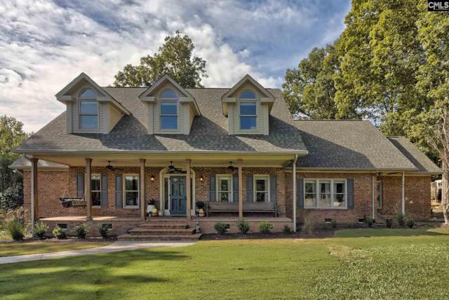 278 Walter Rawl Road, Lexington, SC 29072 (MLS #458641) :: EXIT Real Estate Consultants