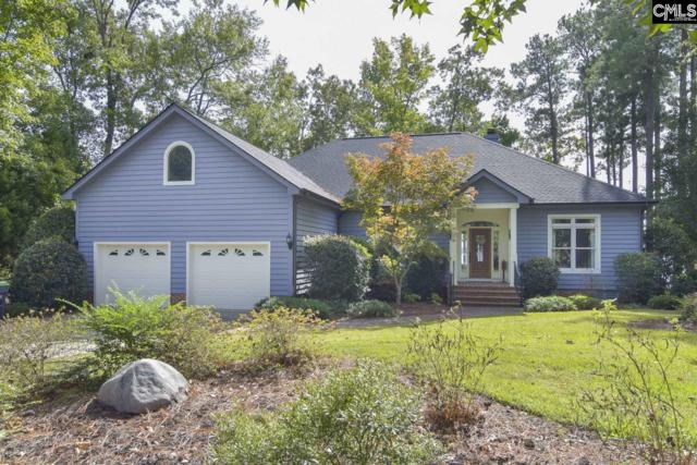 117 Spinnaker Pointe Drive, Chapin, SC 29036 (MLS #458699) :: EXIT Real Estate Consultants