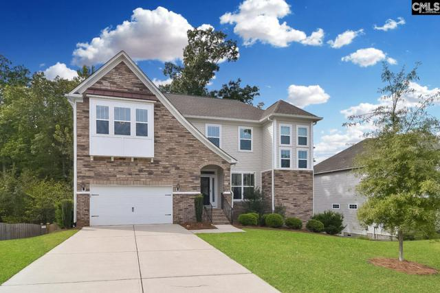 173 Stonemont Drive, Irmo, SC 29063 (MLS #458756) :: Home Advantage Realty, LLC