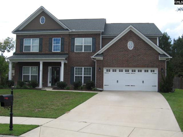 179 Churchland Drive, Columbia, SC 29229 (MLS #458870) :: EXIT Real Estate Consultants