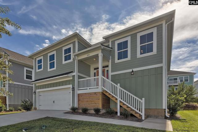 362 Cabana Way #204, Lexington, SC 29072 (MLS #458883) :: EXIT Real Estate Consultants