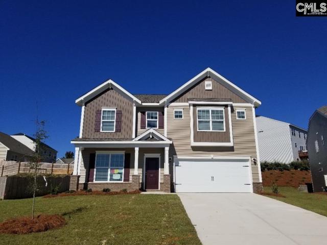 171 Sunny View Lane, Lexington, SC 29073 (MLS #459042) :: EXIT Real Estate Consultants