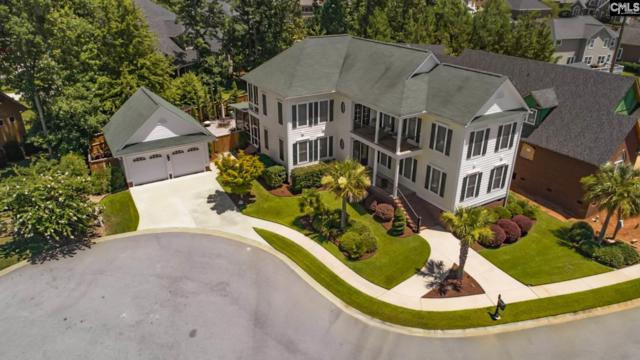 418 Bay Pointe, Lexington, SC 29072 (MLS #459147) :: EXIT Real Estate Consultants