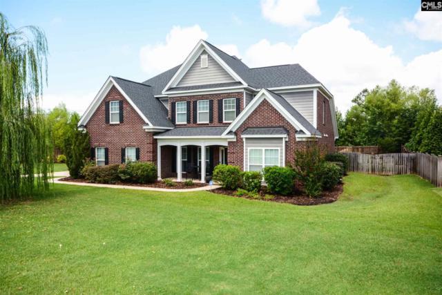 101 Old Market Lane, Irmo, SC 29063 (MLS #459148) :: Home Advantage Realty, LLC