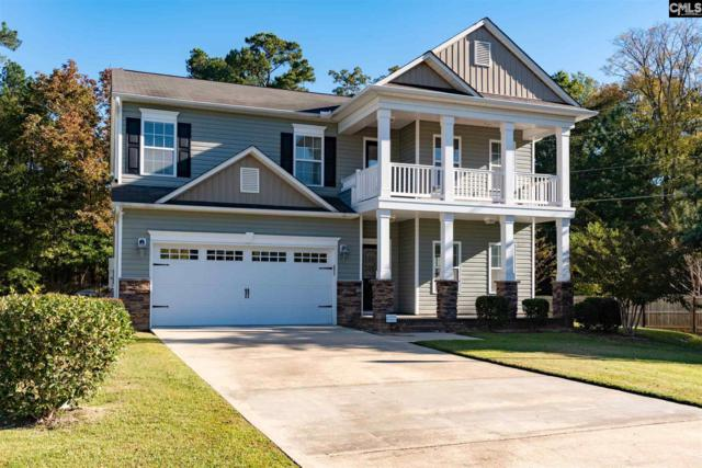 100 Stonemont Drive, Irmo, SC 29063 (MLS #459154) :: EXIT Real Estate Consultants
