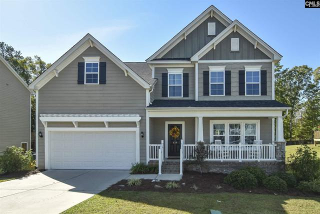 639 Bluff Pointe, Columbia, SC 29212 (MLS #459192) :: EXIT Real Estate Consultants