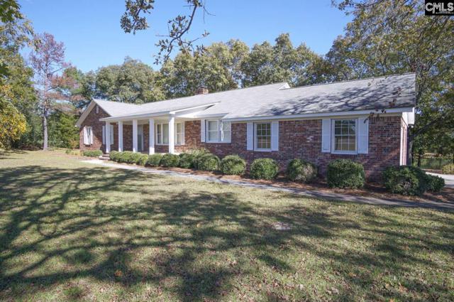 131 Buck Dr, Lexington, SC 29072 (MLS #459195) :: EXIT Real Estate Consultants
